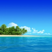 6348ashutterstock_113004163_800_400---tropikal-deniz-ve-palmiyeler