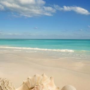 68f16shutterstock_52058911_397_600---tropikal-kum,-deniz-kabuklari,-Karayipler