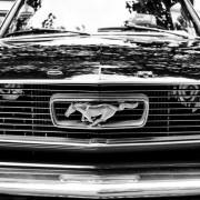 74028shutterstock_91148867--ford-Mustang