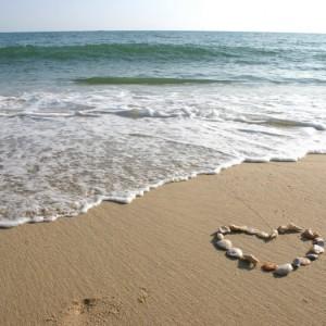 7aa97shutterstock_2427159_800_525---Sahilde-deniz-kabuklarindan-kalp