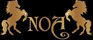 Noa Gergi Tavan izmir Germe Tavan ve Dekorasyon Hizmetleri