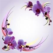 08ec273941349----Mor-orkideler-vektorel