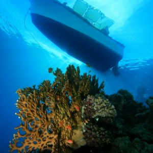 14202shutterstock_46446733--bir-mercan-kayaligi-uzerinde-demir-tekne