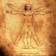 1467eshutterstock_24078022---1492-Leonardo-Da-Vinci---Vitruvius-Man