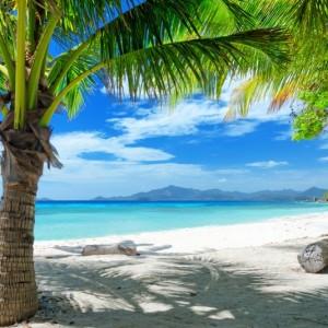 15895shutterstock_107173499--Beyaz-kum-plaj.-Yesil-agaclar.-Malcapuya-ada,-Coron,-filipinler