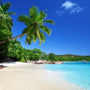 16510shutterstock_120255202--Anse-Lazio-plaji,praslin-adasinda,-Seyseller