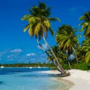 24102shutterstock_180837143--Karayiplerde-bir-plaj