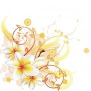 4cb18shutterstock_80000980--plumeria-frangipani-cicek-ile-cok-sik-bir-cicek-arka-plan