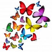 5c389shutterstock_125999393_759_768