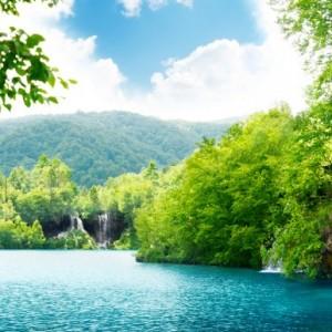 625bcshutterstock_68684590--Hirvatistanda-derin-orman-icinde-selale