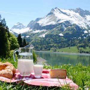 9814cshutterstock_103547372--Alplerin-eteginde-piknik,sut,peynir-ve-ekmek