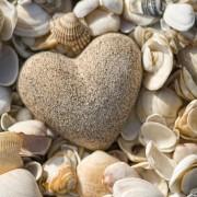 a3bccshutterstock_39355177--Deniz-kabuklari-ve-kalp-seklinde-cakil-tasi