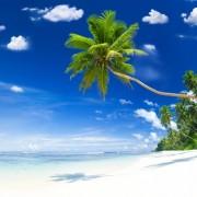 b4cc0shutterstock_178324472--tropik-Beyaz-Kum-plaji