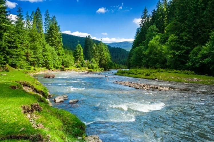 c036ashutterstock_134272340--daglar-agaclar-onunde-akan-nehir