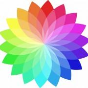 c2871shutterstock_44676277----Renk-tekerlegi-vektorel