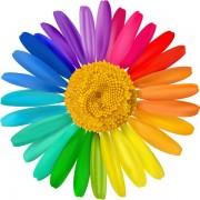 c3684shutterstock_127689527---gokkusagi-renkleri-ile-papatya-tasarimi---vektorel