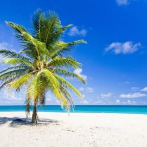 ccf99shutterstock_58272346--faul-Bay,-Barbados,-Karayipler