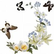 d00d8shutterstock_53837446---beyaz-zambak-kose-ve-kelebekler