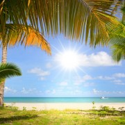 de529shutterstock_59404804--Mavi-gokyuzu-ve-palmiye-agaclari-gunes-beyaz-kum