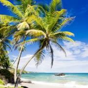 e2eadshutterstock_122891938--Cumana-Korfezi,-trinidad
