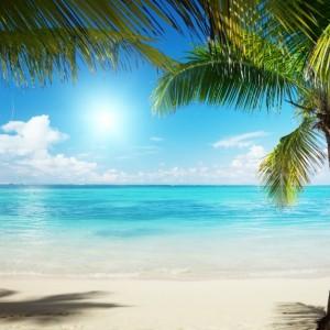 ebbb9shutterstock_45747028--Karayip-denizi-ve-hindistan-cevizi-agaclari
