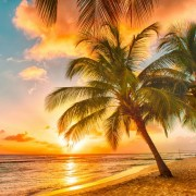 f0e6eshutterstock_181844201--Barbados,-bir-Karayip-adasi