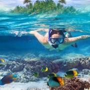 f9970shutterstock_122485123---tropikal-suda-snorkelli-genc-kadin-dalgic