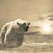 feb76shutterstock_14037967--Kutup-ayisi,-Antartika